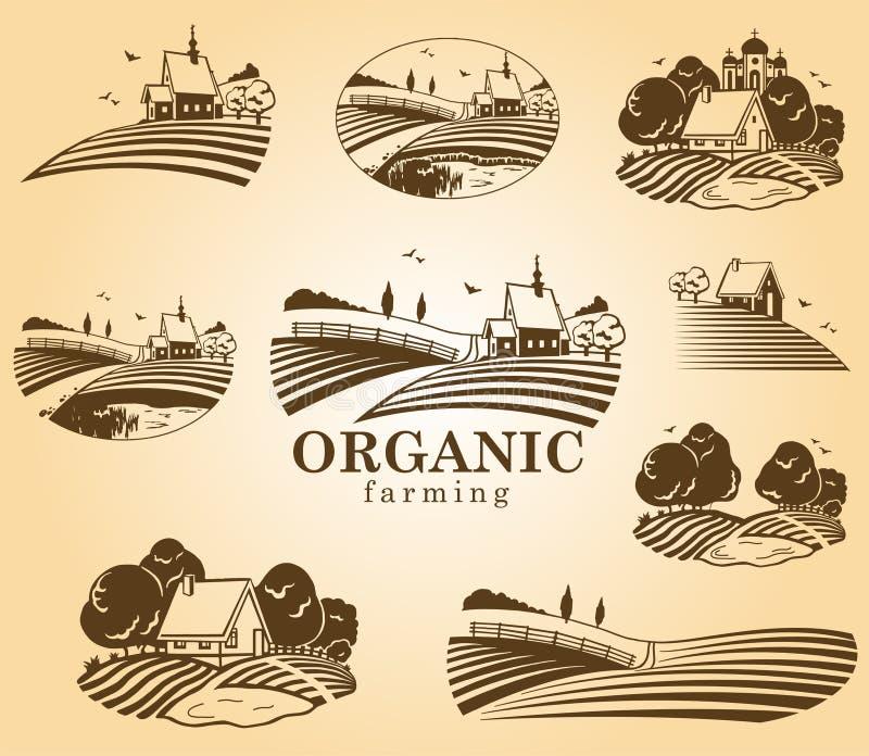 Elementi di disegno di agricoltura biologica illustrazione di stock