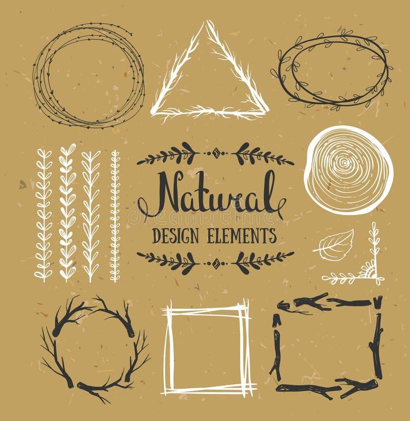 Elementi naturali di disegno Strutture di vettore della foresta sul cartone illustrazione vettoriale
