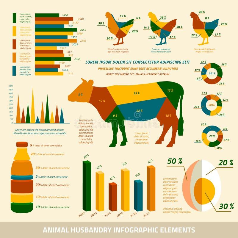 Elementi piani di progettazione di infographics di zootecnia illustrazione di stock