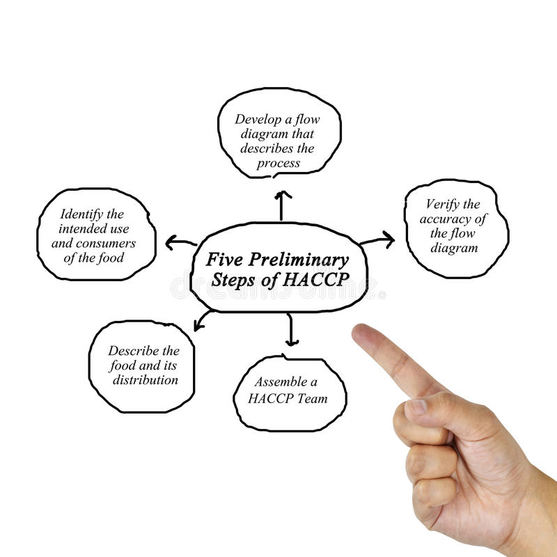 Elemento da escrita da mão da mulher de uma etapa de cinco preliminares do conceito do princípio de HACCP para usado na fabricaçã fotos de stock