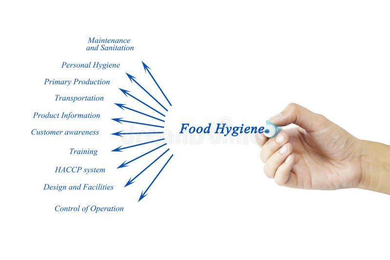 Elemento da escrita da mão das mulheres do conceito do princípio da higiene de alimento para imagens de stock royalty free