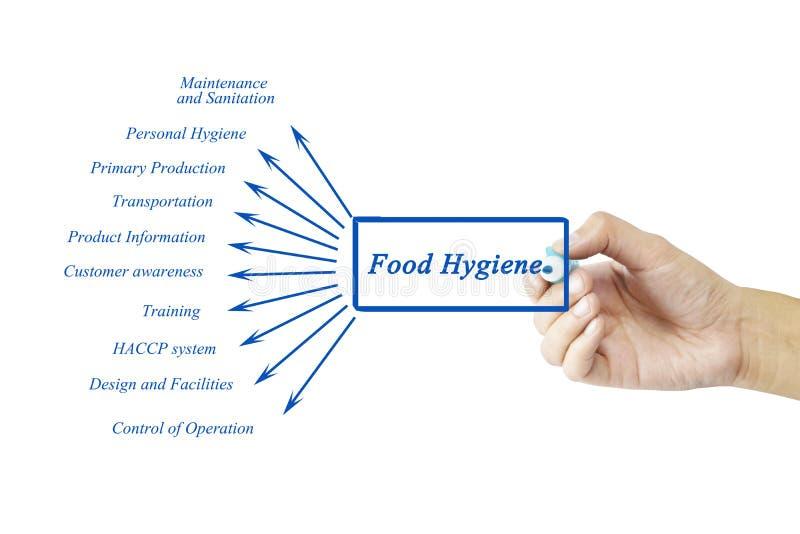 Elemento da escrita da mão das mulheres do conceito do princípio da higiene de alimento para fotos de stock royalty free