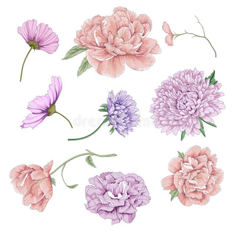elemento da flor ilustração royalty free