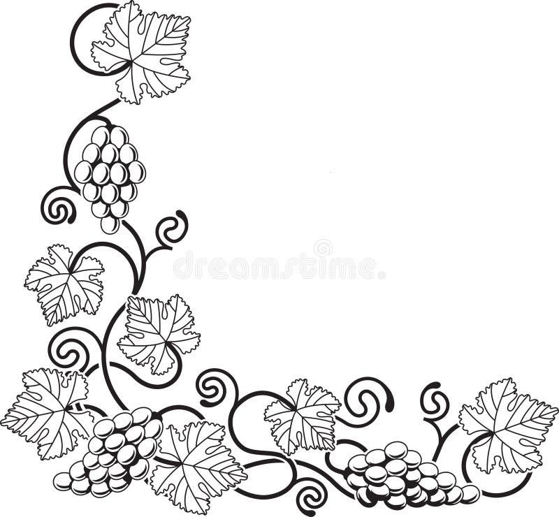 Elemento del diseño de la vid de uva stock de ilustración
