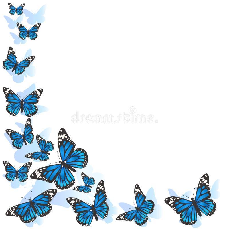 Elemento del dise?o Cap?tulo hecho de mariposas Mariposas azules en un fondo blanco Imagen del vector ilustración del vector