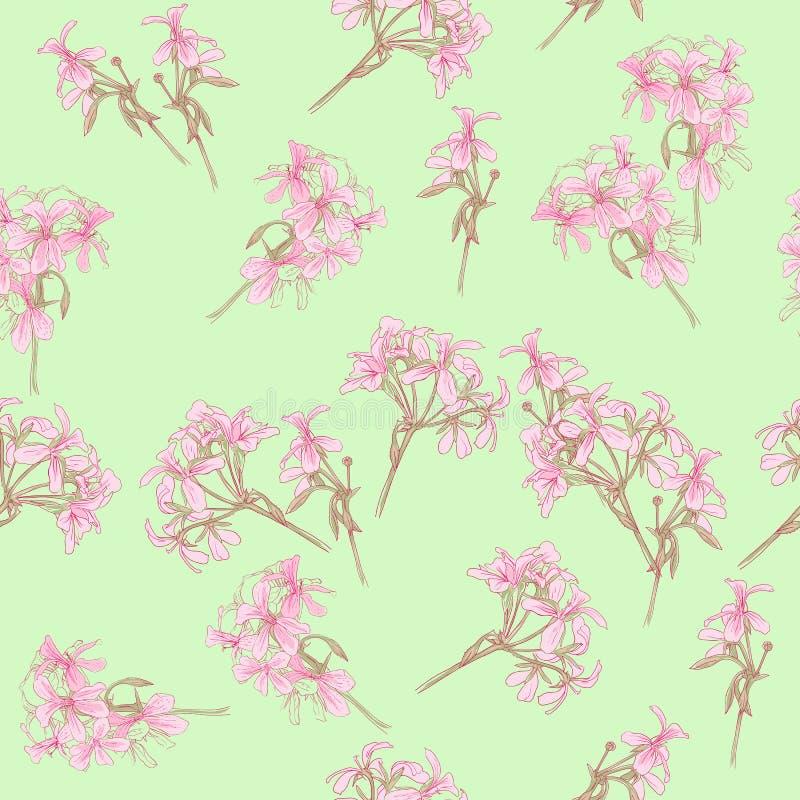Elemento del modelo de flores coloridas stock de ilustración