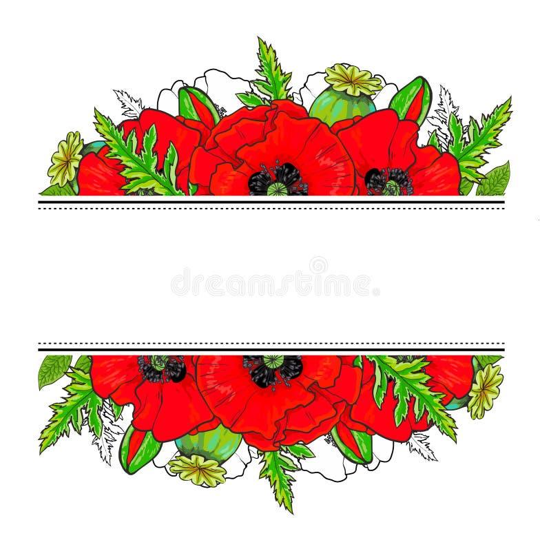 Elemento della decorazione con i papaveri e posto per testo royalty illustrazione gratis