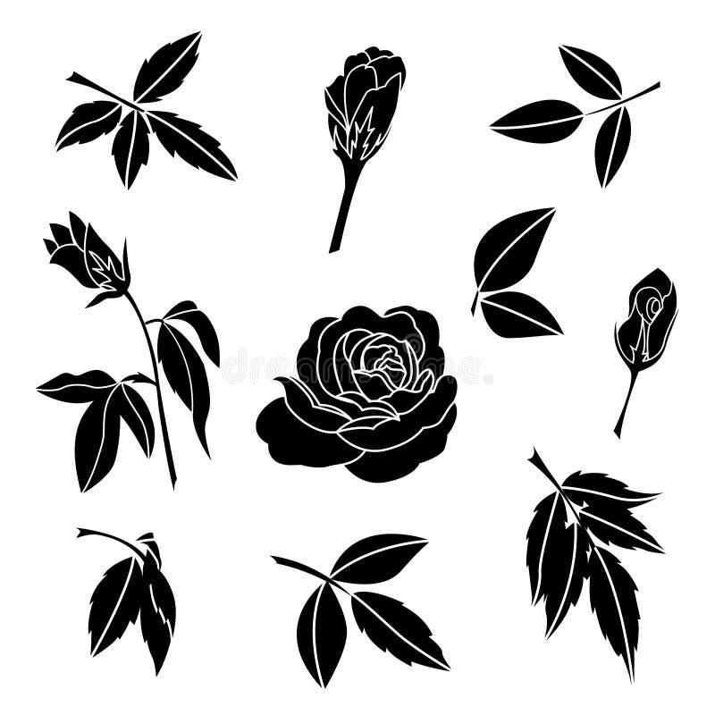 Elemento della rosa del nero e delle foglie, vettore decorativo del fiore royalty illustrazione gratis