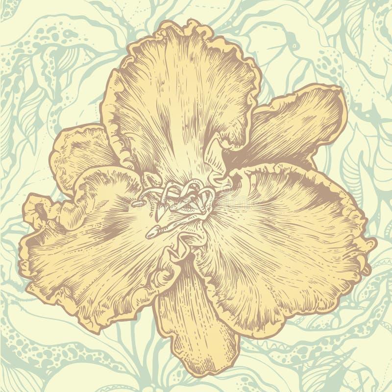 Elemento di disegno floreale e backgrou floreale astratto illustrazione vettoriale