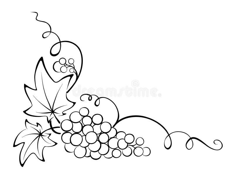 Elemento di disegno - vigna illustrazione vettoriale