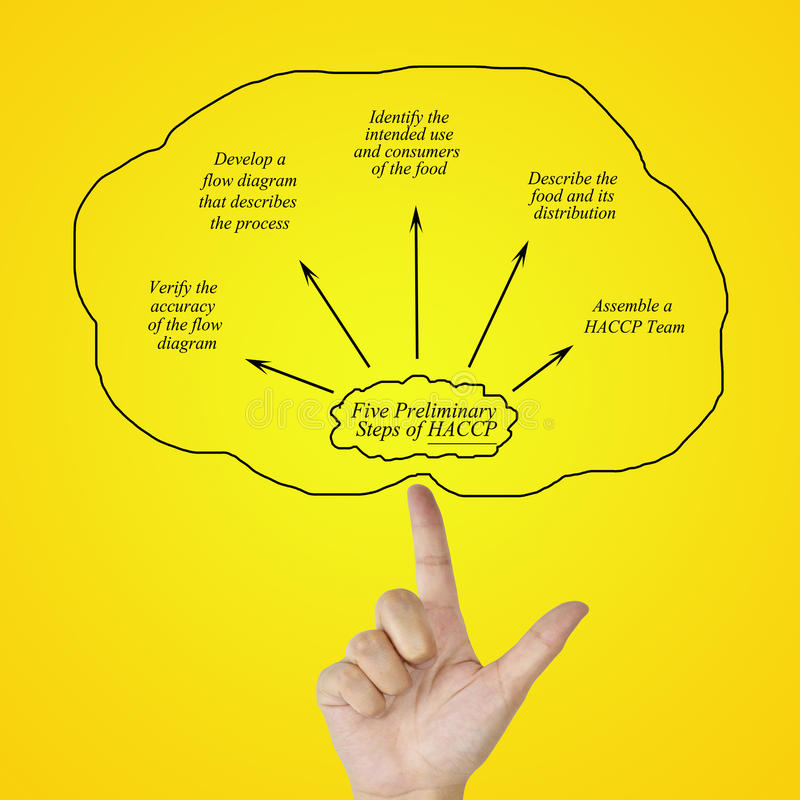 Elemento di scrittura della mano della donna del principio di HACCP su backgroun bianco royalty illustrazione gratis