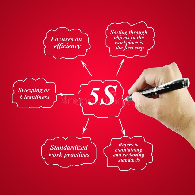 Elemento di scrittura della mano della donna del principio 5S su fondo bianco fotografie stock libere da diritti