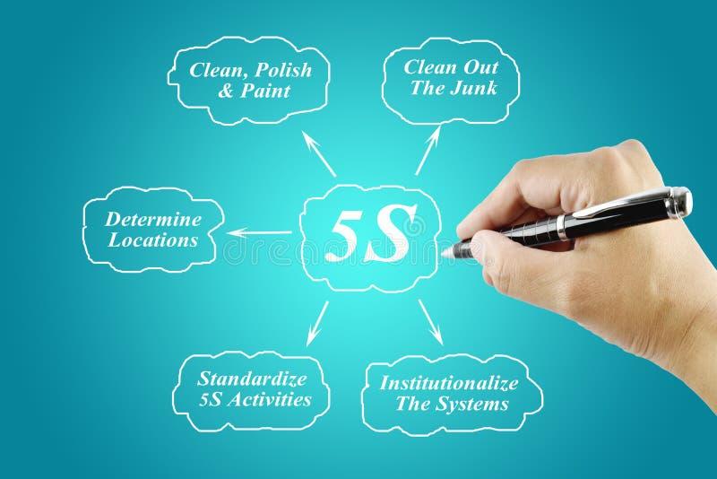 Elemento di scrittura della mano della donna del principio 5S su fondo blu illustrazione di stock