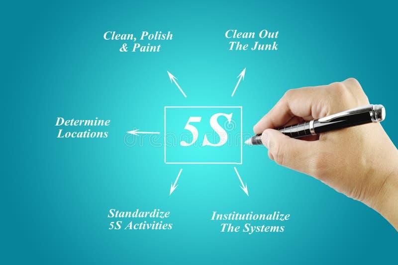 Elemento di scrittura della mano della donna del principio 5S su fondo blu fotografie stock libere da diritti