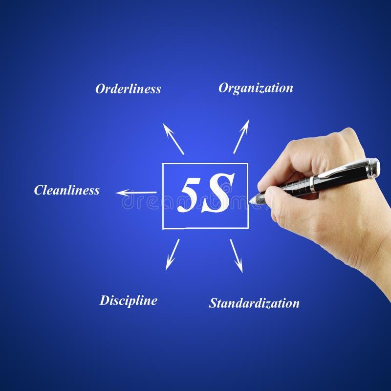 Elemento di scrittura della mano della donna del principio 5S su fondo blu immagine stock libera da diritti