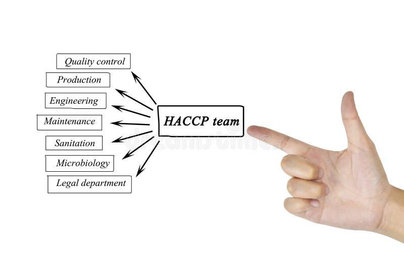 Elemento di scrittura della mano delle donne del gruppo di HACCP per il concetto di affari immagine stock libera da diritti