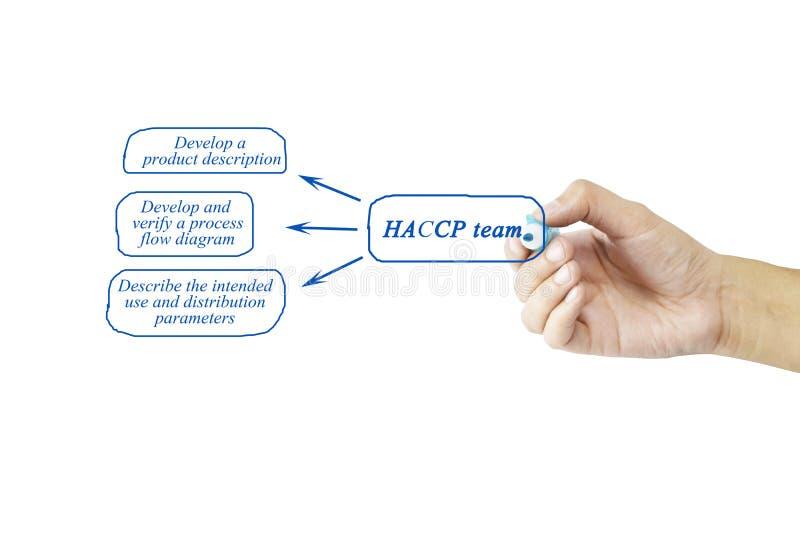 Elemento di scrittura della mano delle donne del gruppo di HACCP per il concetto di affari fotografie stock