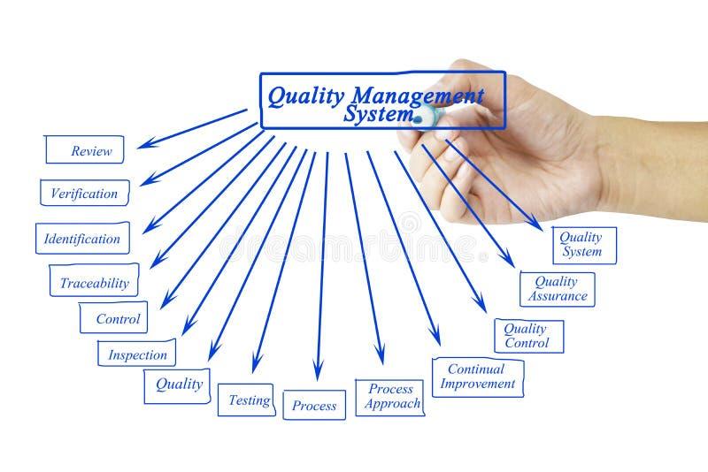Elemento di scrittura della mano delle donne del sistema di gestione della qualità per il busi immagine stock