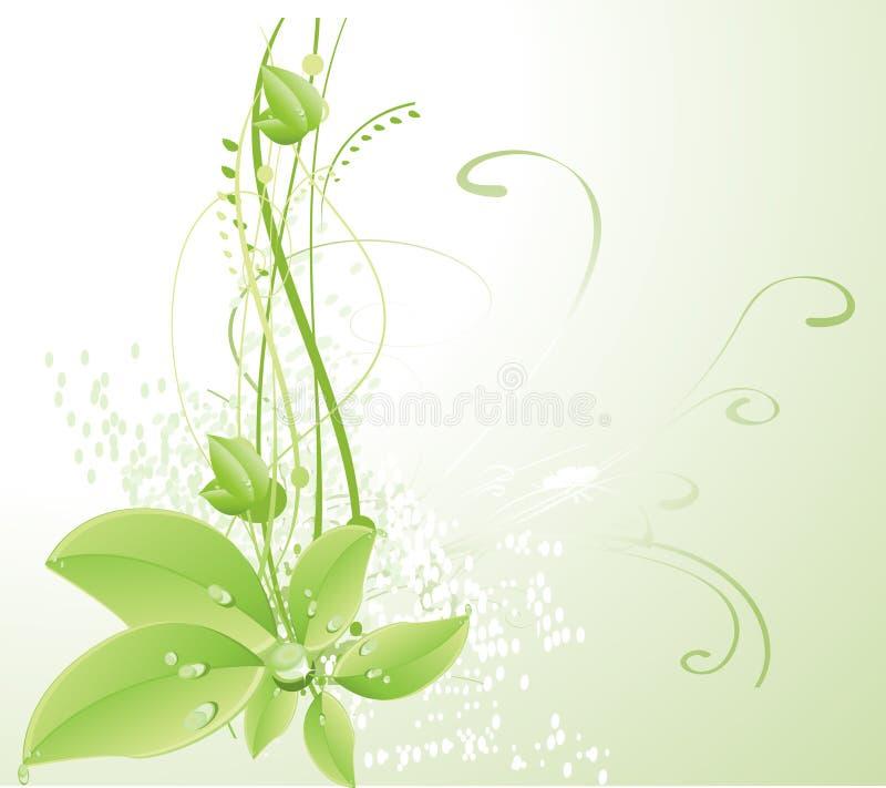Elemento floral do projeto ilustração stock