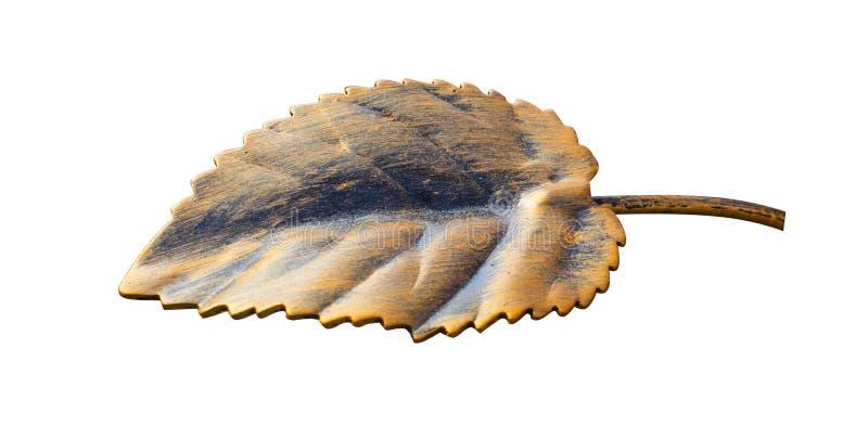 Elemento forjado, folhas do hornbeam, isoladas em um fundo homogêneo imagem de stock royalty free