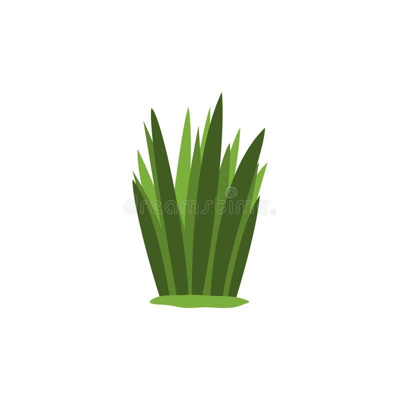 Elemento isolado do carriço do pântano erva daninha verde de finalidades ajardinando do jogo do flash de Forest Landscape Design  ilustração stock
