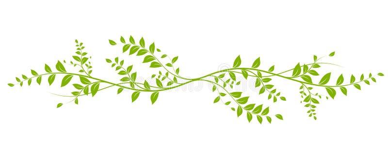 Elemento naturale di disegno di vettore illustrazione di stock
