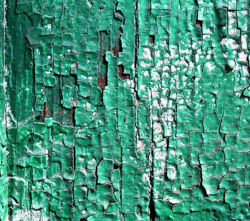 Elemento per fondo, natura, fondo, legno, tronco, superficie decorativa, sollievo fotografia stock