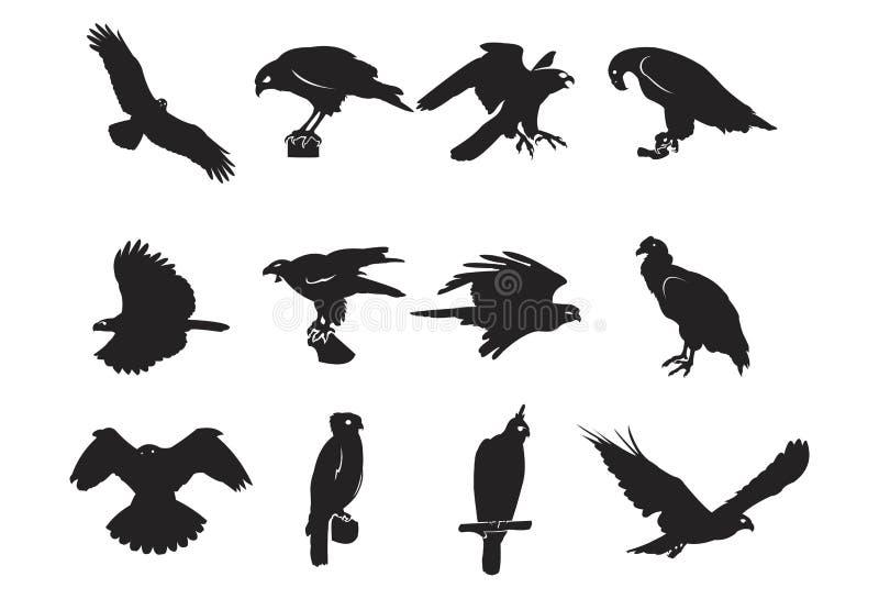 Elemento salvaje despredador Hawk Eagle Falcon del diseño de la silueta del pájaro stock de ilustración