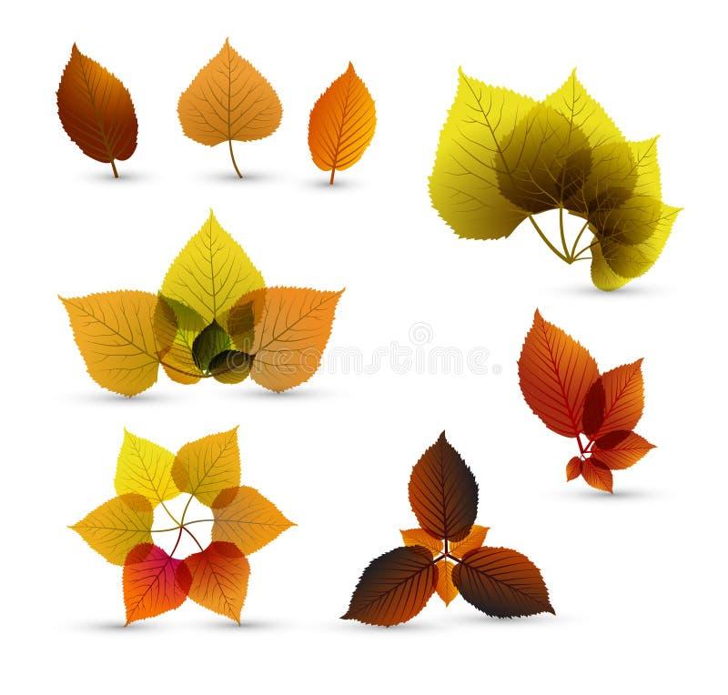 Elementos abstratos da folha do outono ilustração stock