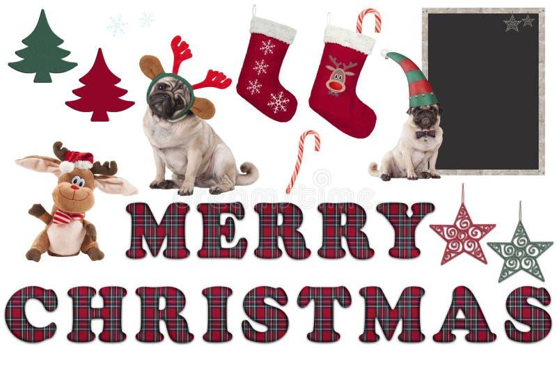 Elementos bonitos e objetos do Natal com cão do pug imagens de stock royalty free
