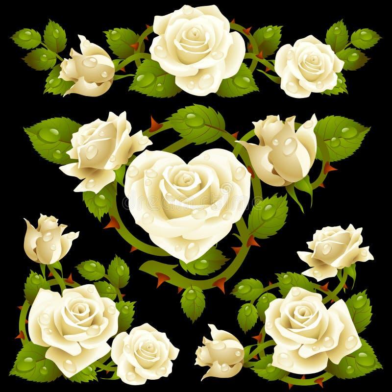 Elementos brancos do projeto de Rosa ilustração royalty free