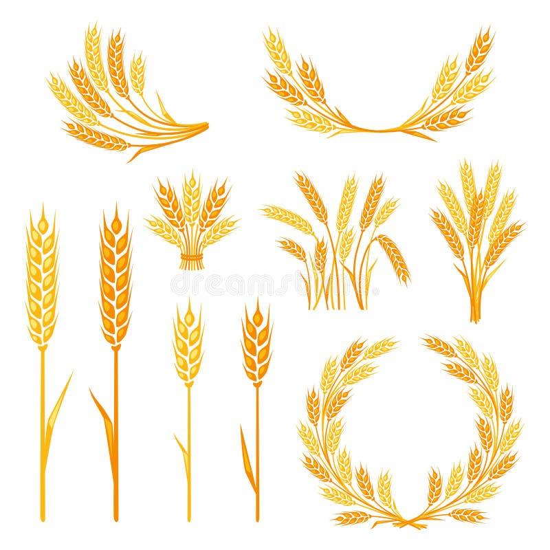 Elementos da coleção do cereal para o projeto ilustração stock