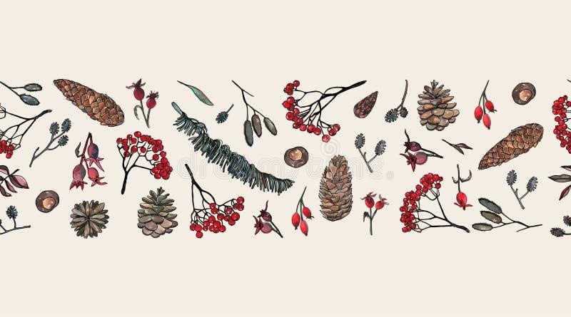 Elementos da natureza: As folhas, ramos da cinza, cone do pinho, aumentaram quadris ilustração stock