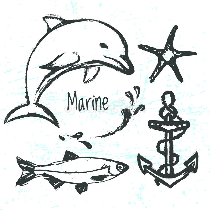 Elementos dibujados mano de la tinta del mundo marino ilustración del vector