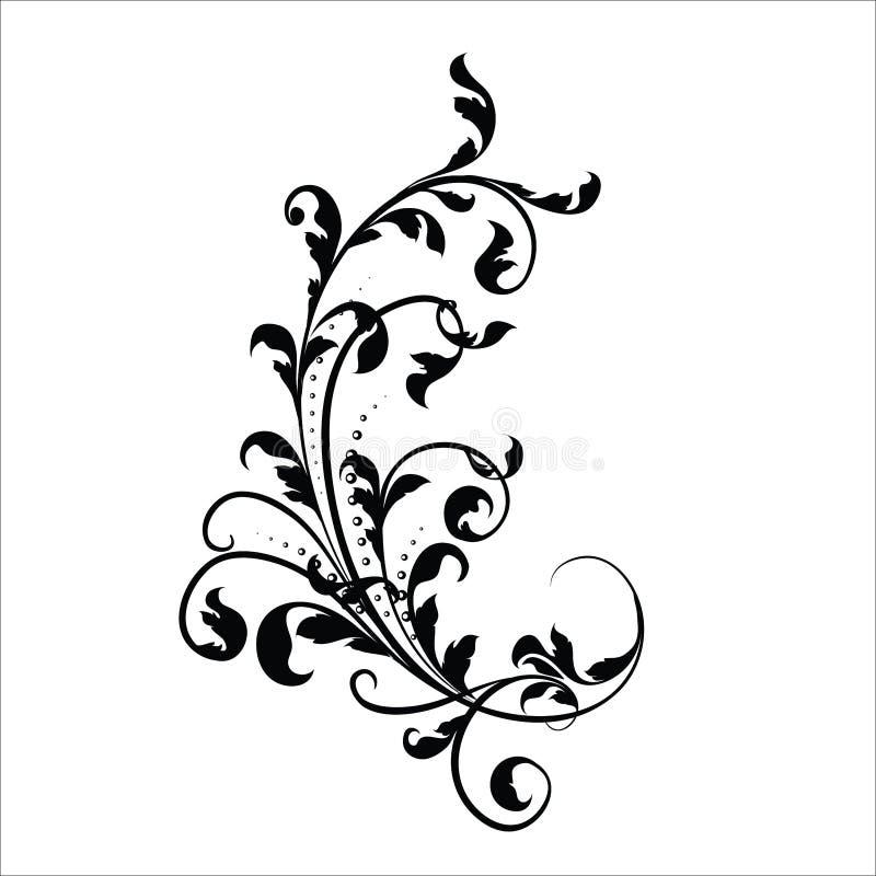Elementos do projeto da flor do vintage Formas encaracolado pretas dos ramos isoladas no fundo branco Ilustra??o do vetor ilustração royalty free