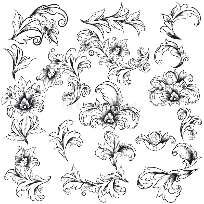 Elementos florais decorativos do projeto ilustração royalty free
