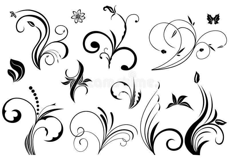 Elementos florais do vetor ilustração stock