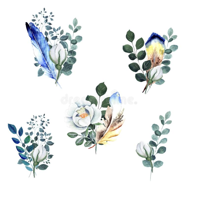 Elementos florais isolados da aquarela com galhos verdes, flores brancas do rosehip ilustração royalty free