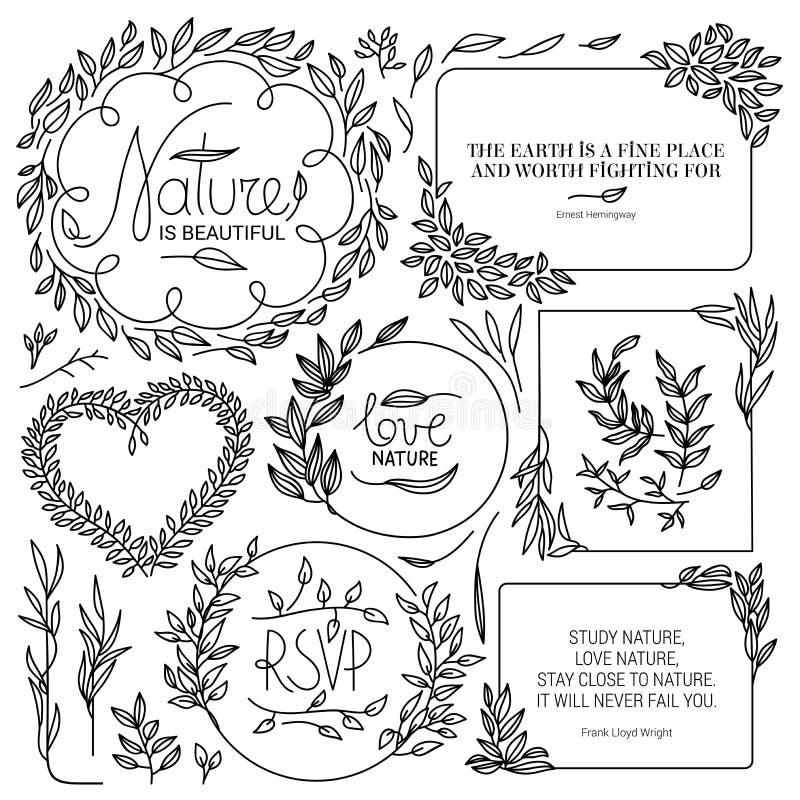 Elementos florais tirados m?o do vintage ilustração do vetor