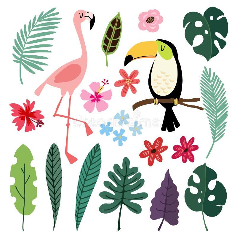Elementos gráficos tropicales del verano Pájaros del tucán y del flamenco Los ejemplos florales de la selva, palma, monstera se v stock de ilustración