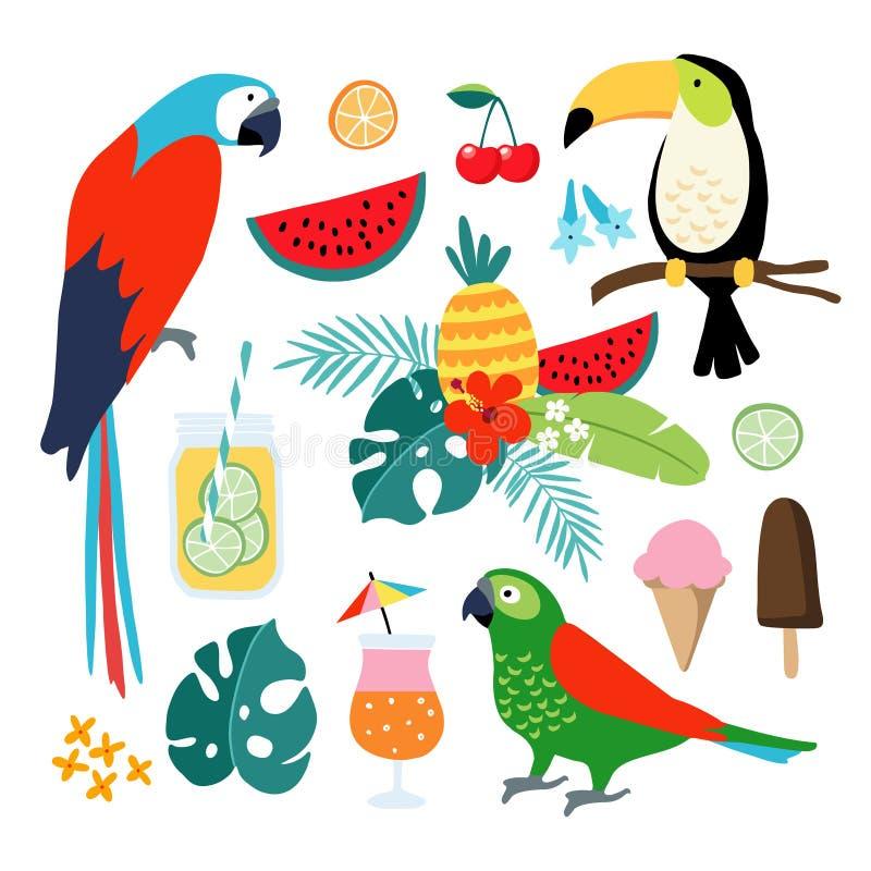 Elementos gráficos tropicales del verano Tucán, pájaros del loro Ejemplos florales de los cócteles, de la fruta, del helado y de  stock de ilustración