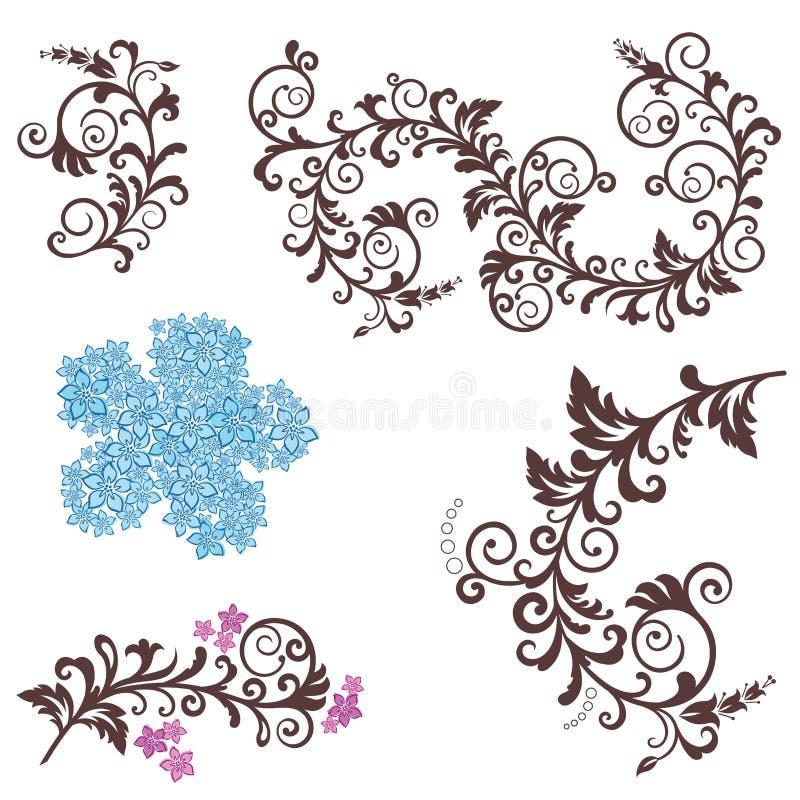 Elementos hermosos del diseño floral stock de ilustración
