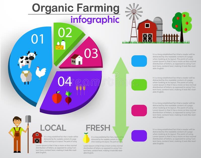 Elementos infographic do campo da exploração agrícola ilustração royalty free