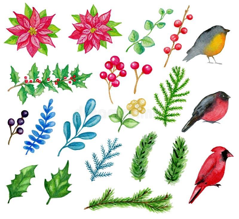 Elementos tirados mão do projeto do Natal da aquarela ilustração royalty free