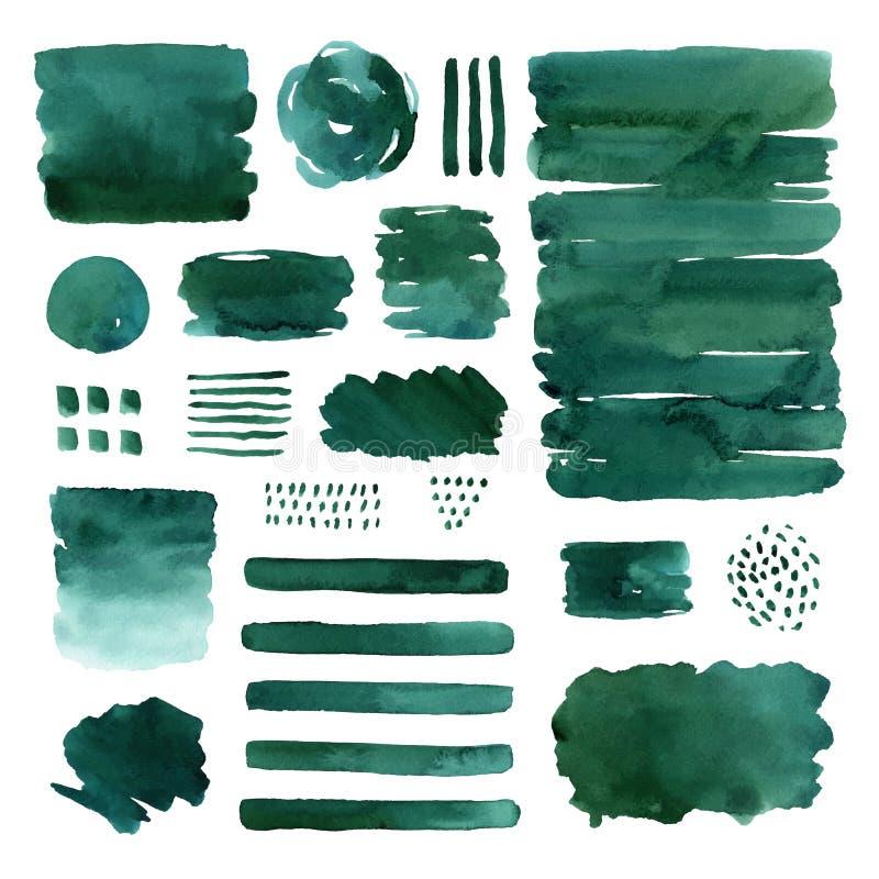 Elementos verdes do sumário da aquarela ilustração do vetor