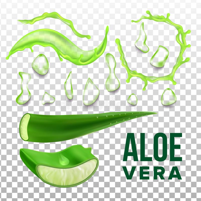 Elements Of Eco Healthcare Aloe Vera Set Vector. Collection Details Of Herbal Healthcare Plant For Cosmetic Product. Vitamin Gel For Skin On Transparency Grid royalty free illustration