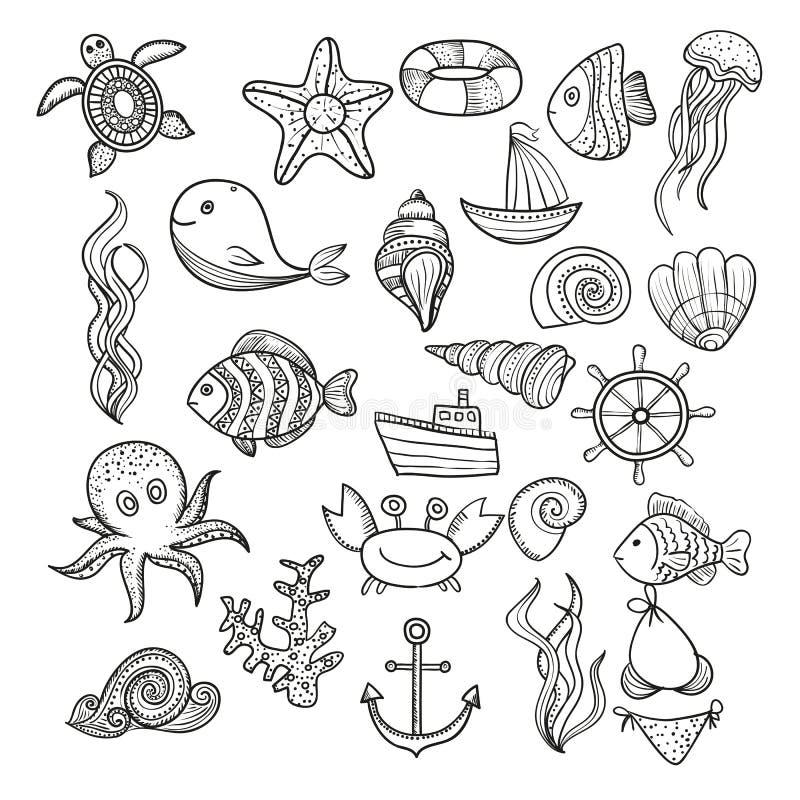 Elements of marine life royalty free stock photos