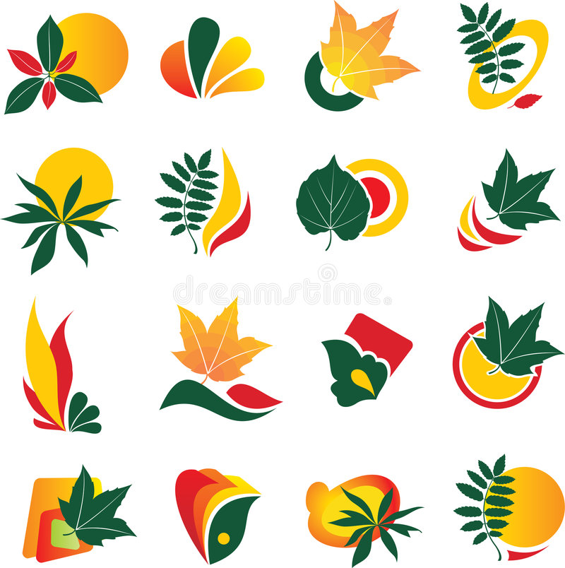elementu liścia loga set ilustracji