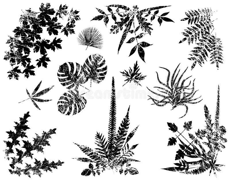 elementy grunge roślinnych royalty ilustracja