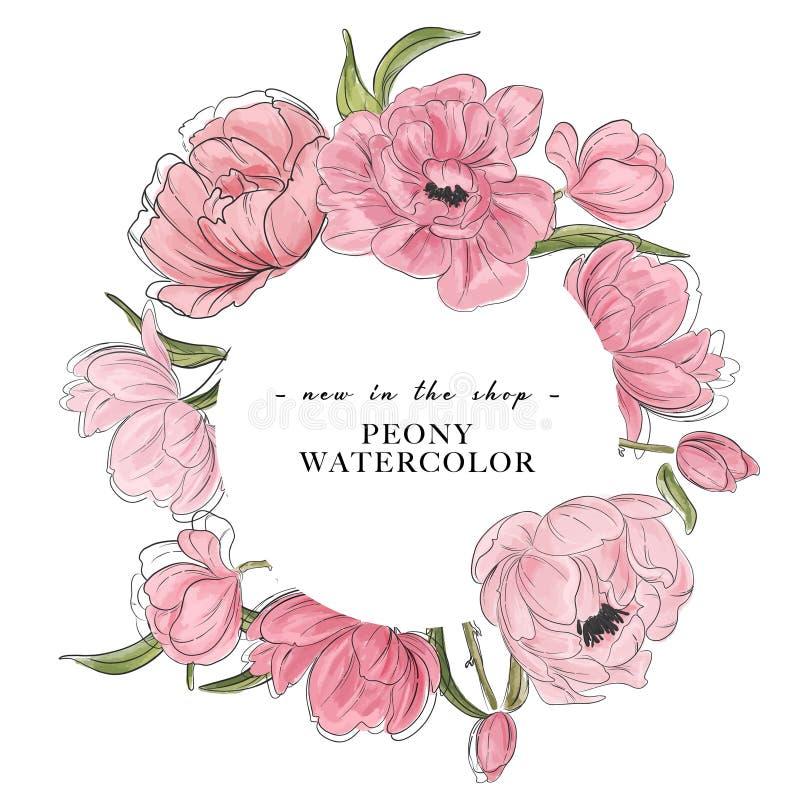 Elemetns пиона цветка акварели вектора нарисованные вручную Флористический магазин, ботаническая реклама бутика Венок пионов цвет бесплатная иллюстрация